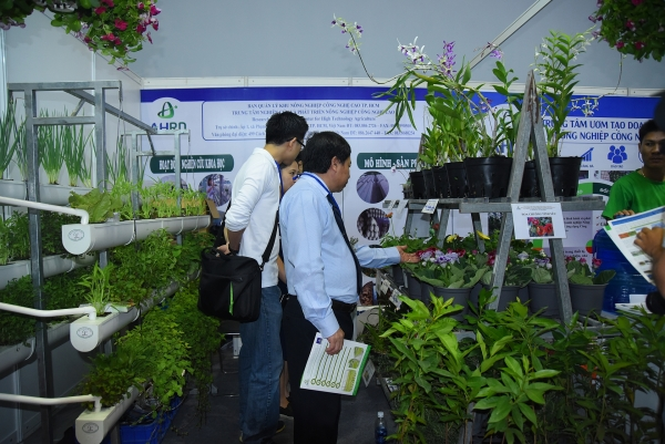 Ample opportunities in Vietnamese horticulture industry