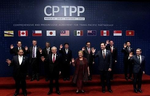 cptpp reflects vietnams global integration