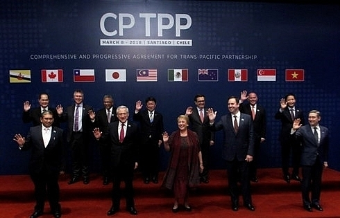 cptpp reflects vietnams global integration