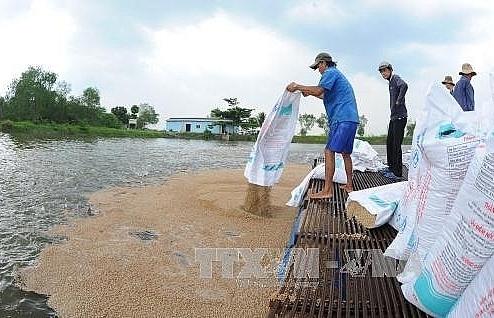 tien giang develops freshwater aquaculture
