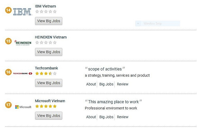 microsoft and ibm dropped out of top 10 vietnams best workplaces
