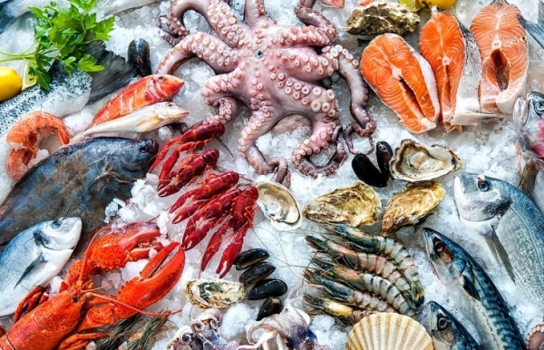 seafood companies under pressure from mounting shipping costs