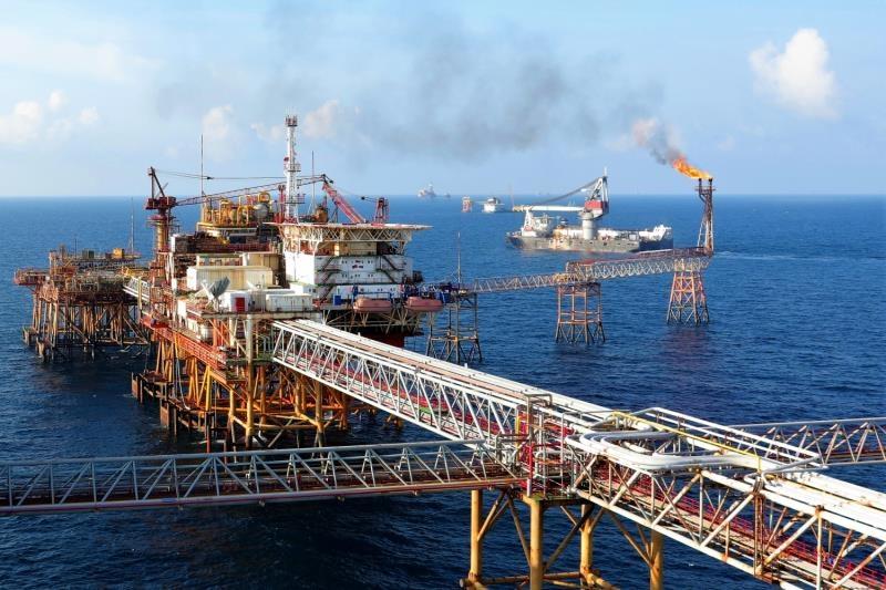 local petroleum firms forecast plunging revenue in 2020