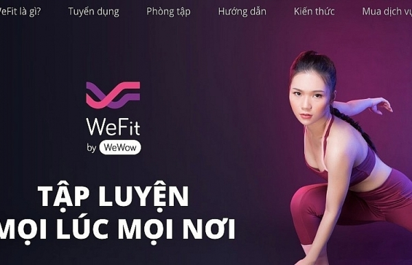 wefit goes bankrupt