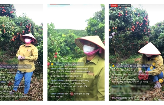 live streaming in vietnam growing more popular for agricultural business
