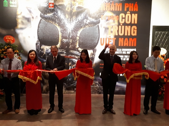 Exhibition on Vietnam's insect biodiversity opens