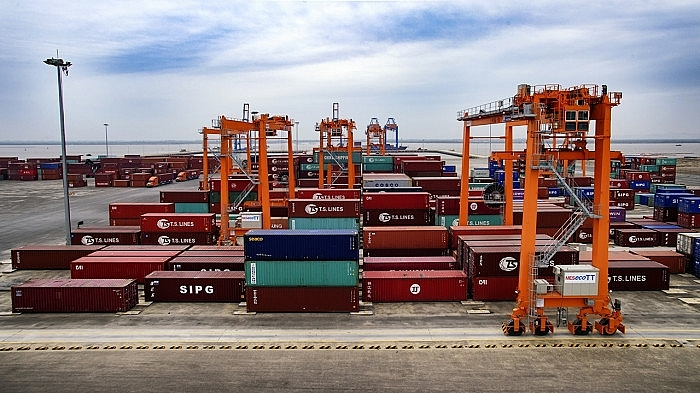 Paradox: Thousands of containers idle at seaports amid severe shortage for delivery