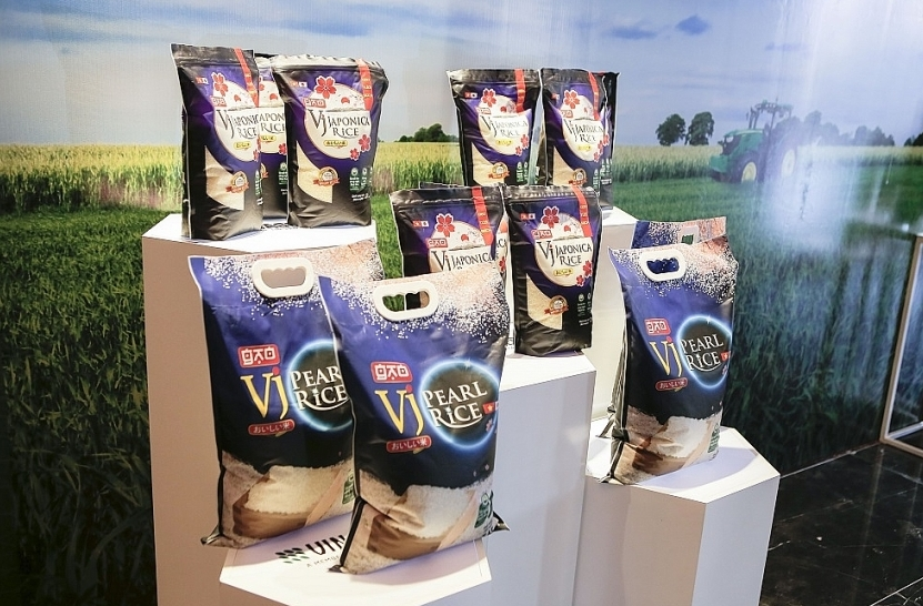 Vinaseed rice products conquer international markets