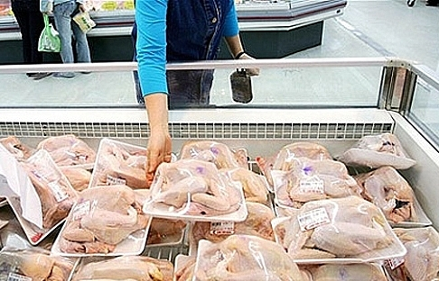 Low-cost chicken imports inhibit domestic products