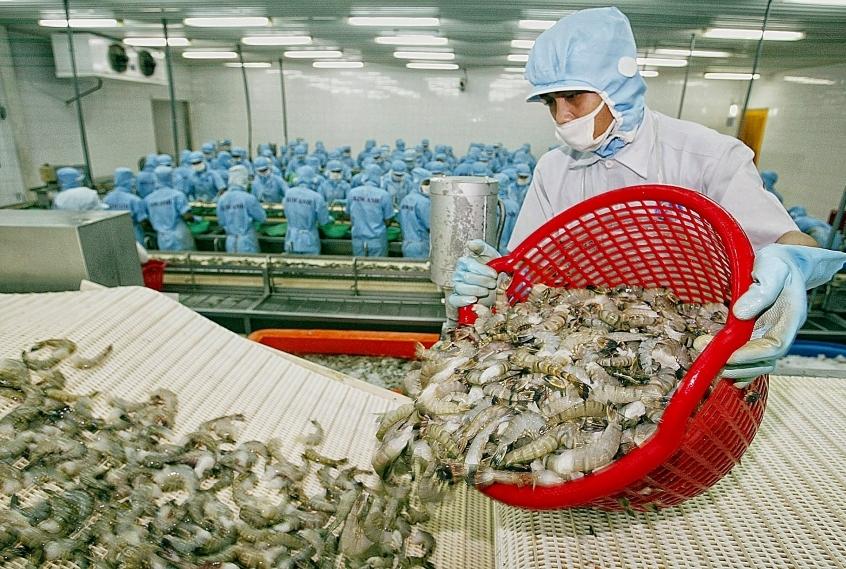 Upbeat shrimp exports amid COVID-19