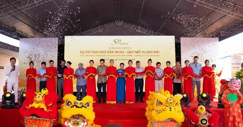 Japfa inaugurates pig farm with 10,000 sows in Binh Phuoc province