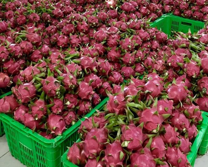 MM Mega Market Vietnam promotes domestic agri-products via Big C Thailand