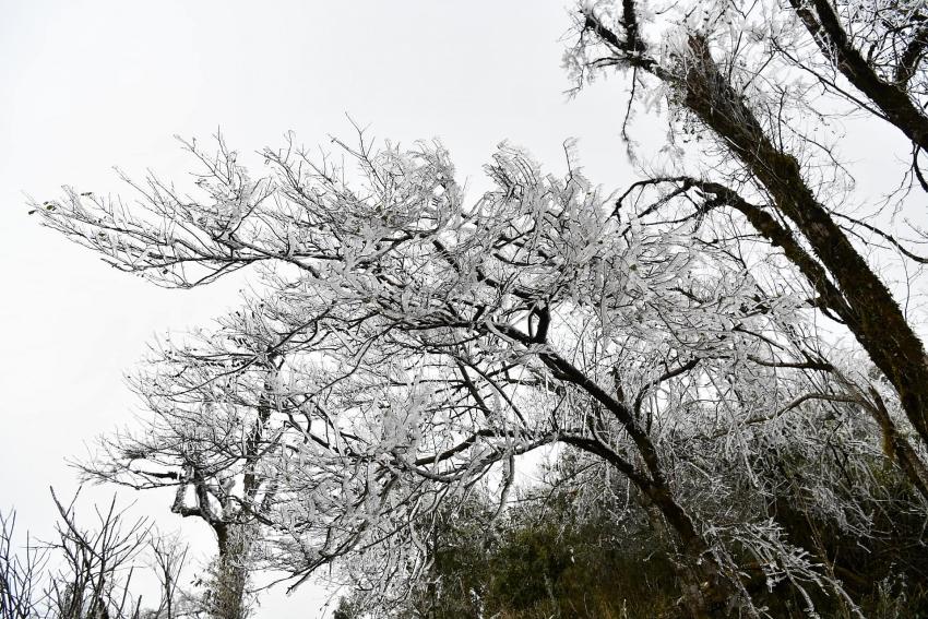 tourists flock to the northern mountains to enjoy snowy