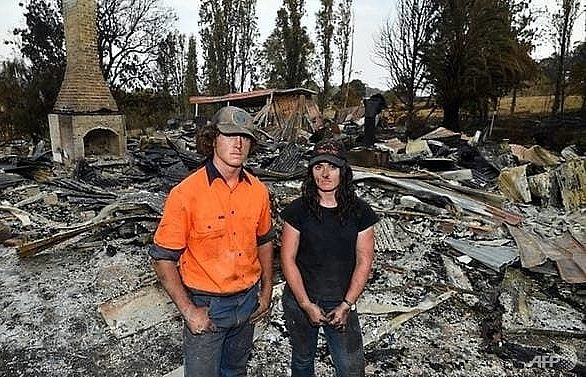 fire hit australian farmers vow to rise from the ashes