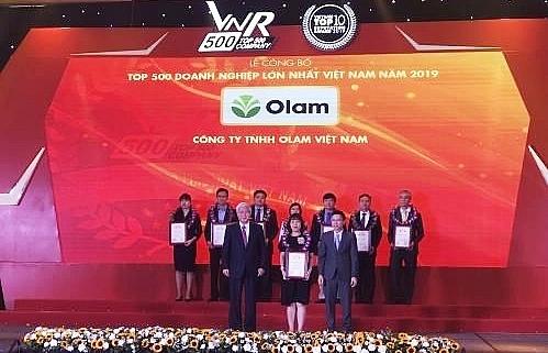 Vietnam's top 500 largest enterprises in 2019 announced