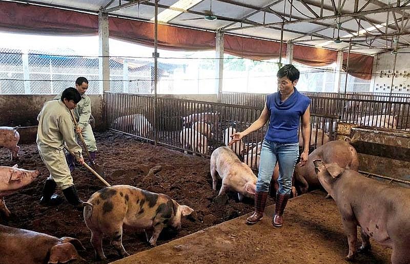 Orfarm opens agri-tourism