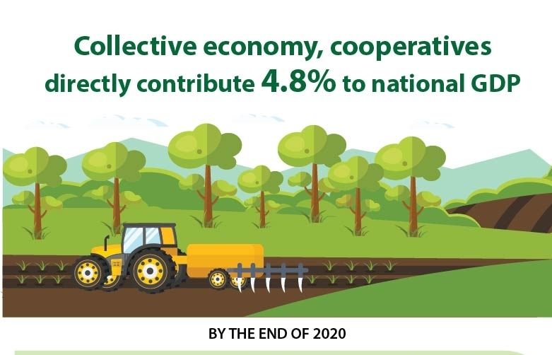 Collective economy, cooperatives directly contribute 4.8pct to national GDP (Infographics)