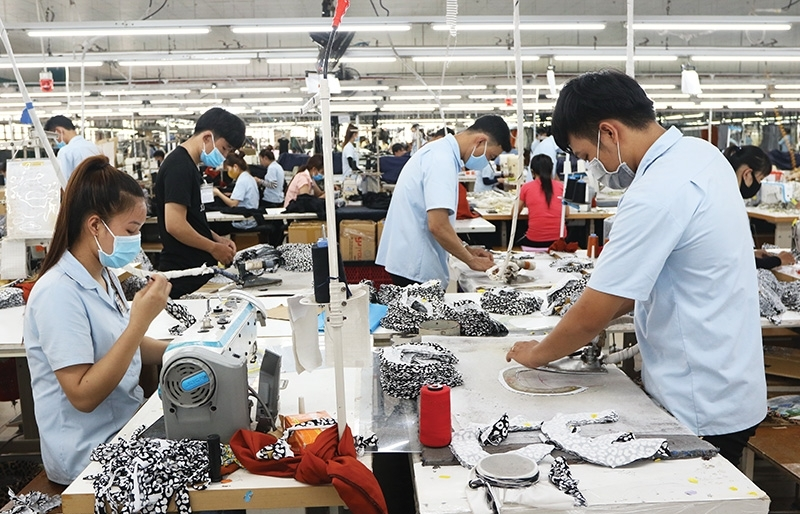 Vietnamese labour market on right track for recovery