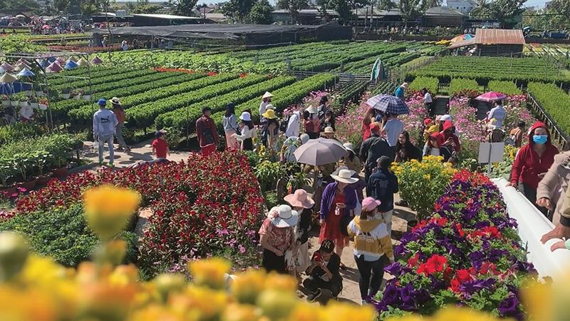 1528 p16 land of pink lotus welcomes tourism week 2021