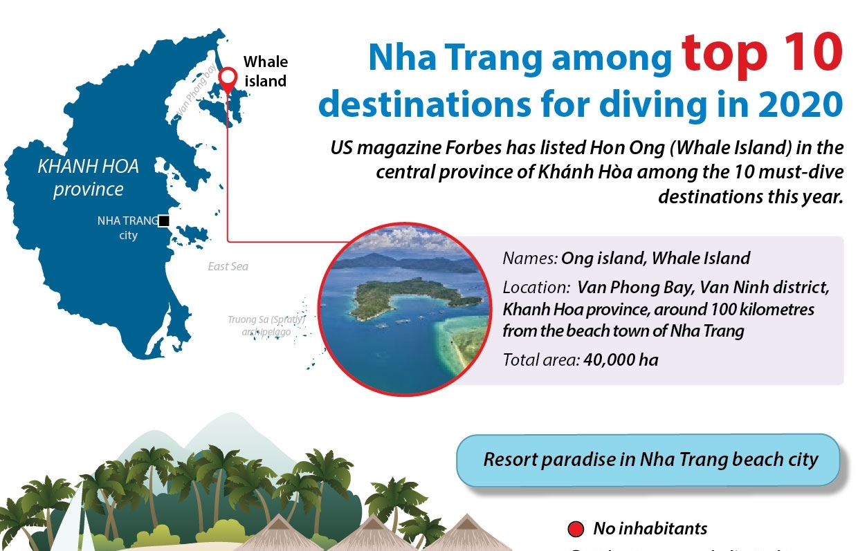 Nha Trang among top 10 destinations for diving in 2020 (Infographics)