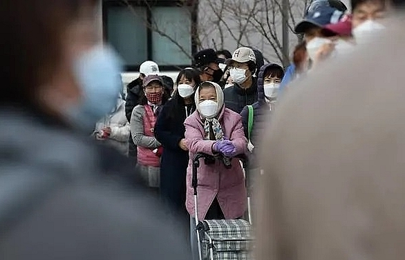 south korea reports 594 more coronavirus cases total 2931