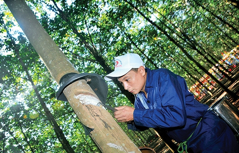 Impetus for rubber suppliers to bounce back even higher
