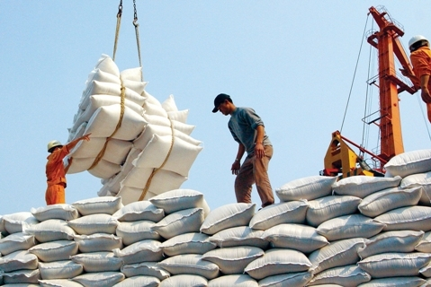 Vietnam signs contracts to export 2.9 million tons of rice