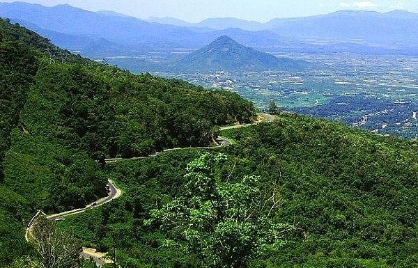 South of Da Lat, quiet Bao Loc refreshes
