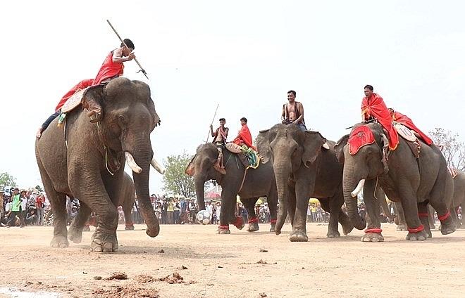 Festivals feature unique culture of ethnic people in Dak Lak