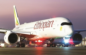 bamboo airways forces down flcs profit