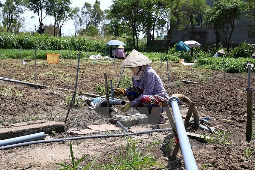 mekong delta province faces severe drought