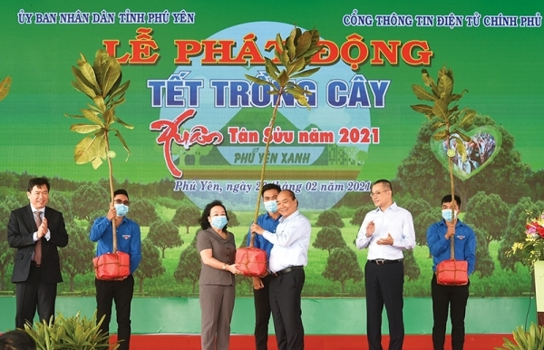 tree planting in phu yen lays roots for nationwide goal