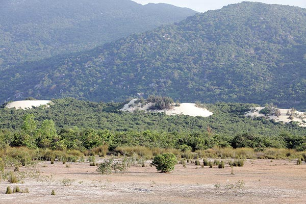 phu yen makes site clearance promise