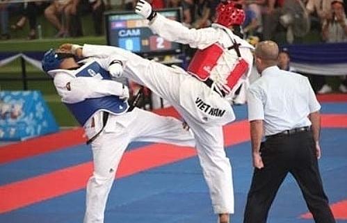 Vietnamese earn four golds at int'l taekwondo champs
