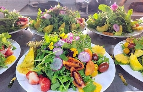 Da Lat culinary contest prepares a record 100 dishes from local ingredients
