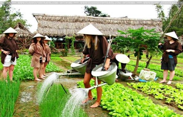 Vietnam's agritourism aims to tap massive potential