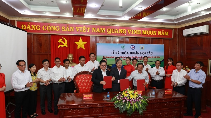 cp vietnam joins binh phuoc to develop safe chicken production chain