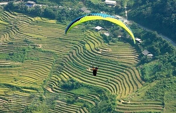 yen bai paragliding festival becomes signature tourism product