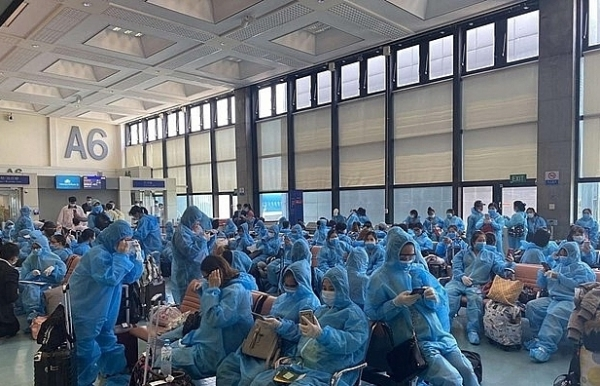 over 340 vietnamese citizens return from taiwan china