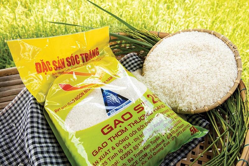 1542 p16 trademark trickery blurs rice status