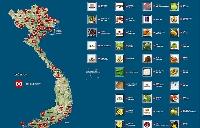 Protecting Vietnamese agricultural brands in the United States through trademarks