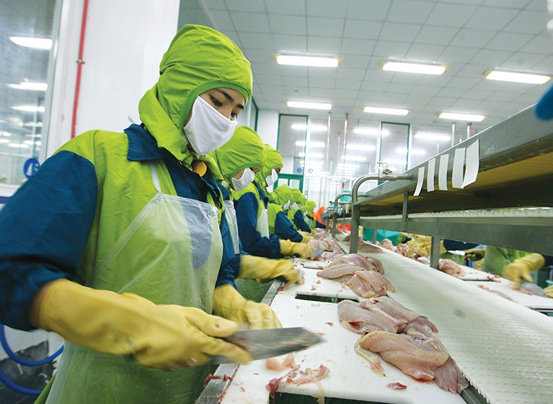 1545 p5 more vietnamese goods sourced by us groups