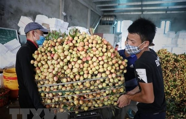 PM orders removing difficulties in farm produce consumption for Bac Giang