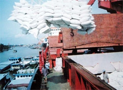Rice companies need certificates to export