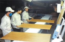 Vinh Phuc human resources pitch