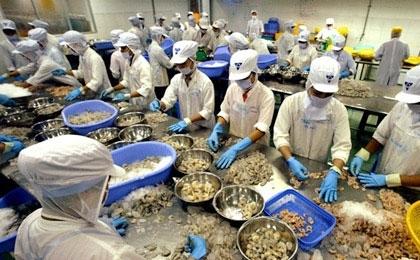 Shrimps: A key export for Vietnam