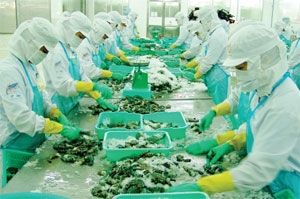 Shrimp exporters getting frazzled