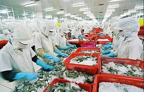 VASEP urges Gov't to protect Vietnam shrimp