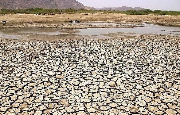 India heatwave temperatures pass 50 degrees Celsius