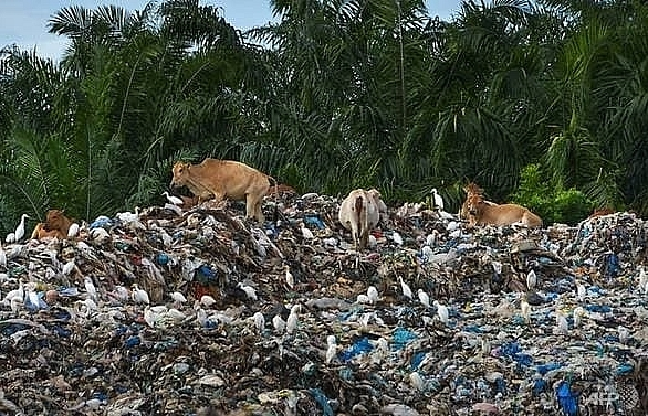 Indonesia returns five containers of waste to the US